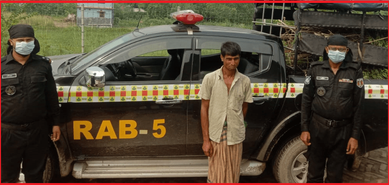 চাঁপাই নবাবগঞ্জেগাঁজার গাছ সহ মাদক ব্যবসায়ী র্যাবের হাতে আটক