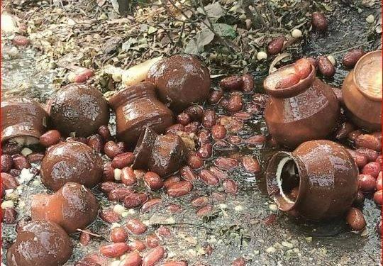 ঝিনাইদহ শহরে র্যাব-৬'র ভ্রাম্যমাণ অভিজান