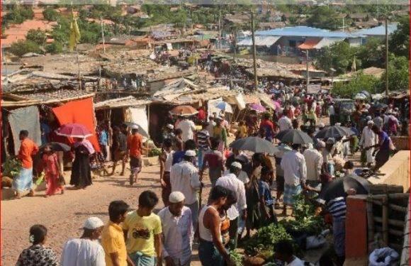 দেশে রোহিঙ্গা প্রত্যাবাসন নিয়ে ভাবা দরকার